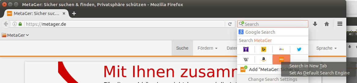 public/img/Firefox_Standard.png